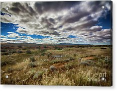 Flinders Ranges Fields  Acrylic Print by Douglas Barnard