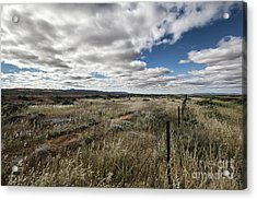 Flinders Ranges Fields V2 Acrylic Print by Douglas Barnard