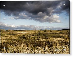 Flinders Ranges Fields V3 Acrylic Print by Douglas Barnard