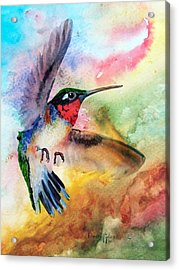 Da198 Flit The Hummingbird By Daniel Adams Acrylic Print