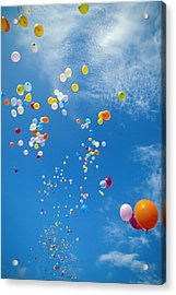 Float Away Acrylic Print by Bob Abraham - Printscapes
