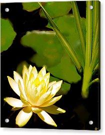 Float Of Elegance  Acrylic Print