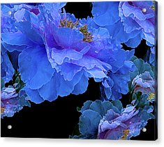 Floating Bouquet 10 Acrylic Print