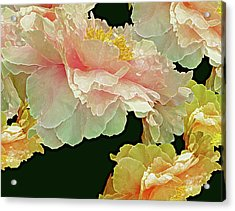 Floating Bouquet 31 Acrylic Print