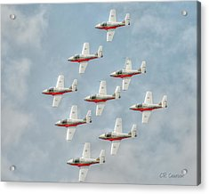 Flock Of Snowbirds Acrylic Print
