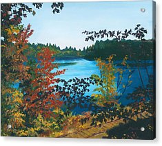 Acrylic Print featuring the painting Floodwood by Lynne Reichhart