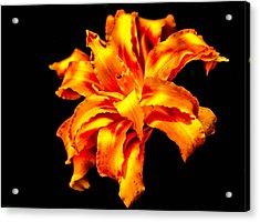 Flora Dance Acrylic Print
