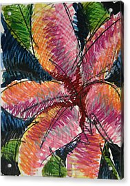 Flora Exotica 3 Acrylic Print by Dodd Holsapple