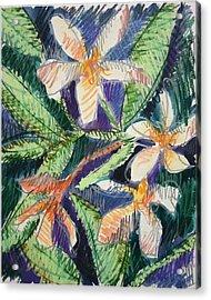 Flora Exotica Acrylic Print by Dodd Holsapple