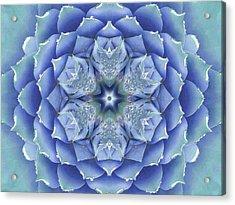 Flora Muse Mandala Acrylic Print