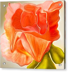 Flora Vita Bella Acrylic Print by Robert OP Parrish
