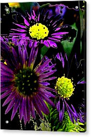 Floral 81 Acrylic Print by Chuck Landskroner