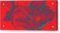 Floral Abstract In Dramatic Red Acrylic Print