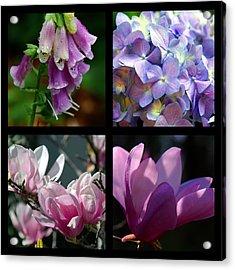 Floral Beauties Acrylic Print by Susanne Van Hulst