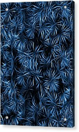 Acrylic Print featuring the painting Floral Blue Abstract by David Dehner