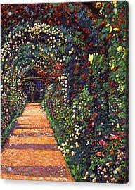 Floral Canopy Acrylic Print by David Lloyd Glover