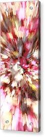 Floral Explosion No1 Acrylic Print