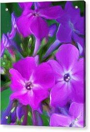 Floral Expression 2 021911 Acrylic Print by David Lane