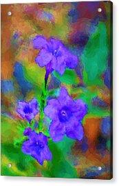 Floral Expression Acrylic Print by David Lane