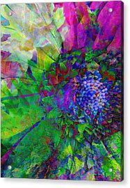 Floral Expressions I Acrylic Print by Ricki Mountain