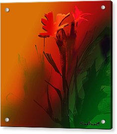 Floral Fantasy Acrylic Print by Asok Mukhopadhyay