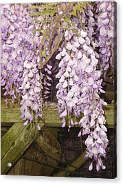 Floral Gate Acrylic Print
