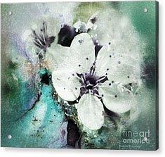 Floral Haze Acrylic Print