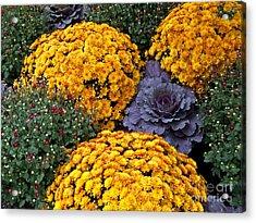 Floral Masterpiece Acrylic Print by Ann Horn