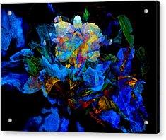 Floral Phantom Acrylic Print by Hanne Lore Koehler