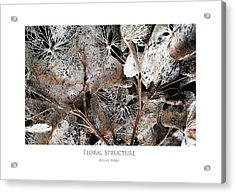 Floral Structure Acrylic Print