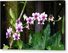 Acrylic Print featuring the photograph Floral Sway by Deborah  Crew-Johnson