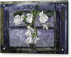 Acrylic Print featuring the photograph Floral Window Frame by Bonnie Willis