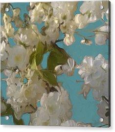 Floral09 Acrylic Print