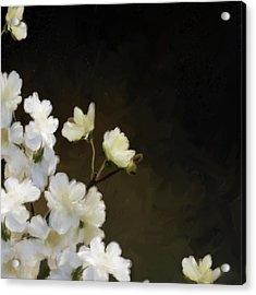 Floral12 Acrylic Print