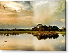 Florida Bird Pond Acrylic Print