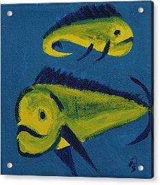 Florida Fish Acrylic Print