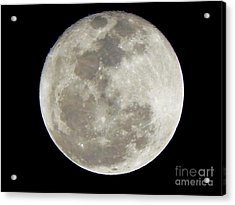 Florida Moon 2-28-2011 Acrylic Print by Jack Norton