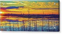 Florida Nature Paradise 2  Acrylic Print