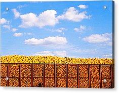 Florida Orange Juice Acrylic Print by Justin  Dyal