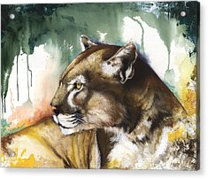 Acrylic Print featuring the mixed media Florida Panther 2 by Anthony Burks Sr