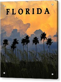 Florida Poster Acrylic Print by David Lee Thompson
