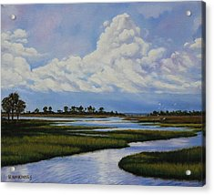 Acrylic Print featuring the painting Florida by Rick McKinney