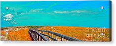 Florida Sand Dunes Atlantic New Smyrna Beach Acrylic Print