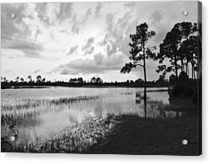 Florida Scene Acrylic Print by Steven Scott