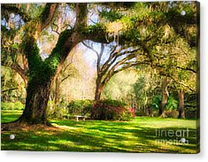 Acrylic Print featuring the photograph Florida Sunshine by Mel Steinhauer