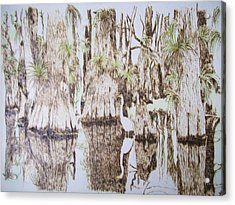 Florida Wildlife Pyrograpgic Portrait By Pigatopia Acrylic Print by Shannon Ivins