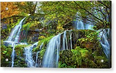 Acrylic Print featuring the photograph Flow by John Poon
