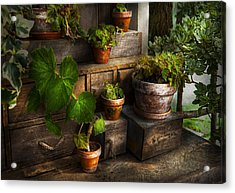 Flower - Plant - A Summers Soak  Acrylic Print by Mike Savad