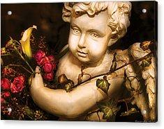 Flower - Rose - The Cherub  Acrylic Print by Mike Savad