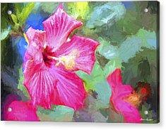 Flower 1 Acrylic Print by Glenn Gemmell